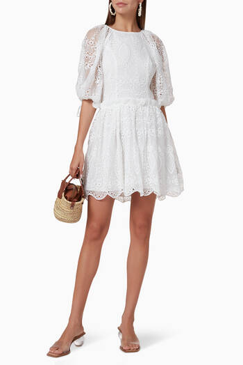 hover state of Splendour Embroidered Mini Dress