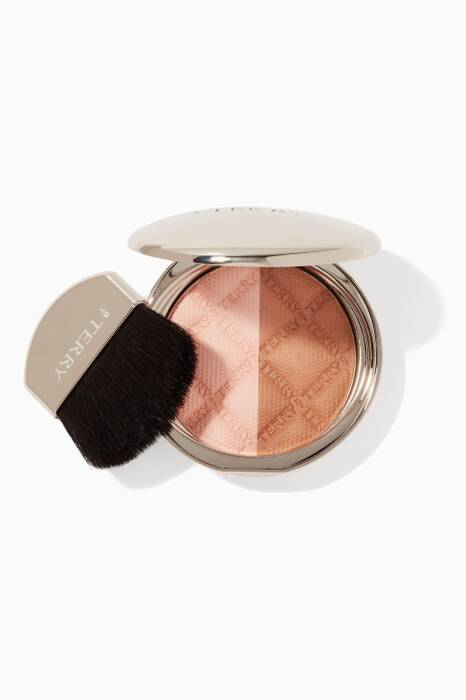 Fresh Contrast Terrybly Densiliss Contour Compact
