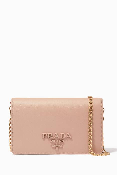 Powder-Pink Monochrome Wallet Chain Bag